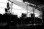 black & white / monochrome